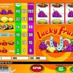 <b>SLOTMACHINE - LUCKY FRUITS</b>