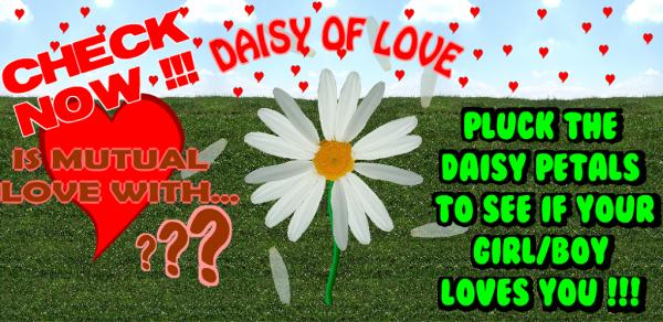 daisyi1024